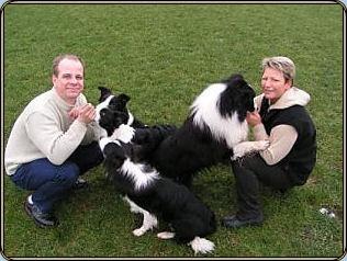 hunde søger nyt hjem